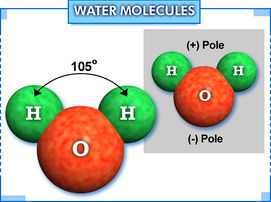 Figure 1.1 Water Molecule showing structure and polarity